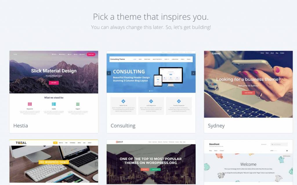 Choose Bluehost theme